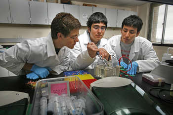 College of Health Sciences Summer Research Program