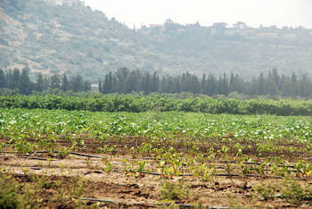 FEASR - Photo credit: StateofIsrael via Foter.com / CC BY
