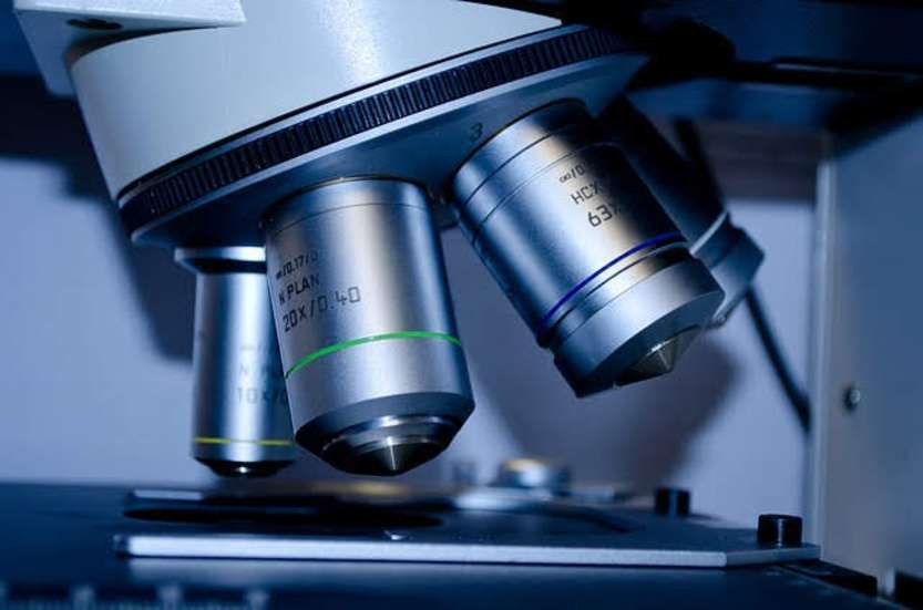 Meet in italy for life sciences 2019: photocredit PublicDomainPicturesda Pixabay