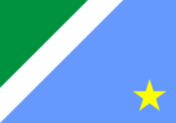 Flag of Mato Grosso do Soul